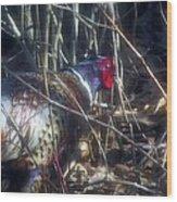 Pleasant Pheasant II Wood Print