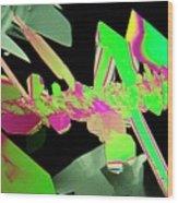 Plm Of Crystals Of Saccharin Wood Print
