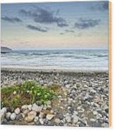 Plomo Beach Wood Print