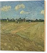 Ploughed Fields - The Furrows Wood Print
