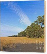 Pluff Mud And Salt Marsh At Hunting Island State Park Wood Print