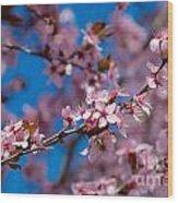 Plum Flowers And Honey Bee Wood Print