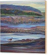Plum Island Salt Marsh Sunset Wood Print
