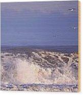 Plum Island Waves Wood Print