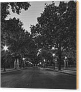Plum Street To Franklin Square Wood Print