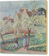 Plum Trees In Flower Wood Print