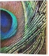 Plume  Wood Print