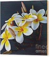 Plumeria Bouquet 2 Wood Print