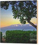 Plumeria Sunrise Wood Print