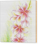 Plumerias  Wood Print