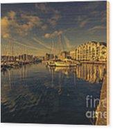Plymouth Barbican Marina  Wood Print