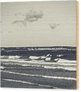 Plymouth Cliffs Wood Print