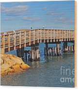 Plymouth Harbor Breakwater Wood Print by Catherine Reusch  Daley