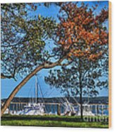 Plymouth Harbor In Autumn Wood Print