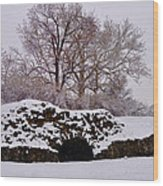 Plymouth Meeting Lime Kilns In The Snow Wood Print