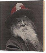 Poet Walt Whitman George Collins Cox Photo 1887-2010 Wood Print