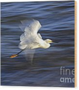 Poetry In Motion, Malibu California Wood Print