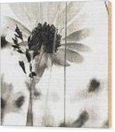 Poets Gain Wood Print