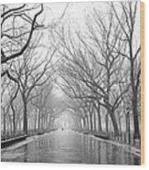 New York City - Poets Walk Central Park Wood Print