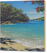 Pohutukawa Nz - Beach And Rangitoto  Wood Print