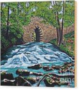Poinsett Bridge I, Historic Landmark In Upstate Of South Carolina Wood Print