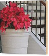 Poinsettias By The Stairway Wood Print