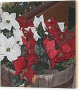 Poinsettias Wood Print