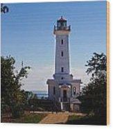 Point Abino Lighthouse Path Wood Print