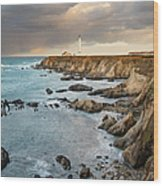 Point Arena Headland And Lighthouse Wood Print