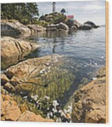 Point Atkinson Lighthouse In Vancouver Bc Vertical Wood Print