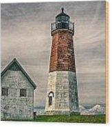 Point Judith Wood Print