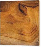 Point Lobos Abstract 10 Wood Print