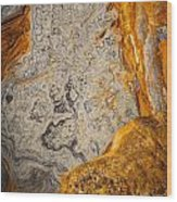 Point Lobos Abstract 12 Wood Print