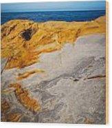 Point Lobos Abstract 14 Wood Print