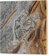 Point Lobos Abstract 4 Wood Print