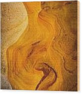 Point Lobos Abstract 6 Wood Print