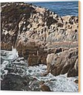 Point Lobos Coast 2 Wood Print