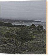 Point Lobos National Park Wood Print