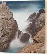 Point Lobos Number Two Wood Print by Catherine Lau