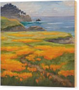 Point Lobos Poppies Wood Print by Karin  Leonard