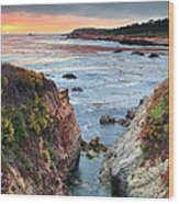 Point Lobos State Reserve 3 Wood Print by Emmanuel Panagiotakis