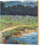 Point Lobos Trail Wood Print