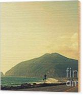 Point Mugu In California Wood Print