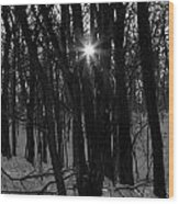Point Of Light In Black And White Wood Print
