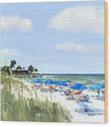Point Of Rocks On Siesta Key Wood Print by Shawn McLoughlin