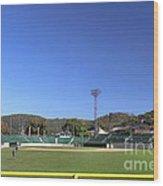 Point Stadium - Johnstown Wood Print