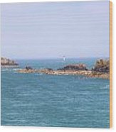 Pointe Du Grouin - Brittany Wood Print