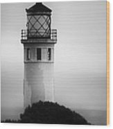 Pointe Vincente Lighthouse Wood Print