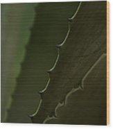 Pointed Wood Print