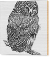 Pointillism Sawhet Owl Wood Print by Renee Forth-Fukumoto